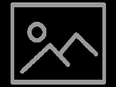 Daytona 1971 (2)