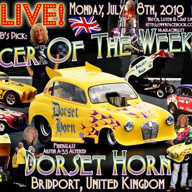 Dorset_Horn_Jul_08_2019_FB1