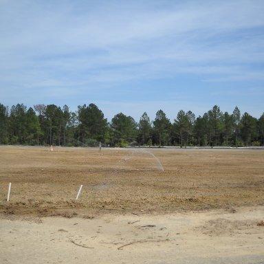 Looking toward infield