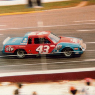 #43 1981 Old Dominion 500