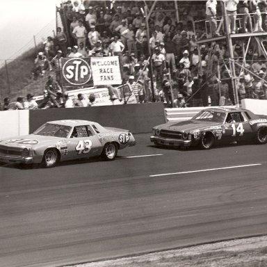 1978 Southern 500 - Richard Petty Darlington