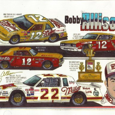 Bobby Allison artwork