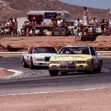 1981 DALE