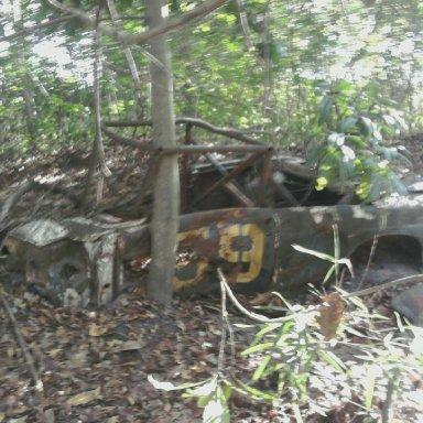 Photo uploaded on November 6, 2010