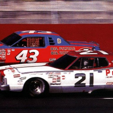 1978 Petty and Pearson