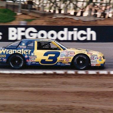 Dale Earnhardt2