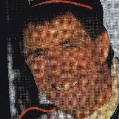 Darrell Waltrip (1993)