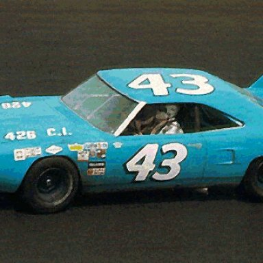 Petty Superbird