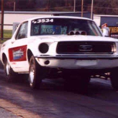 Chucks Mustang
