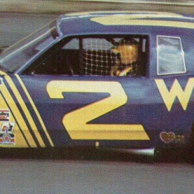 Dale Earnhardt 1981