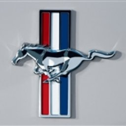 Mustang Owners Group
